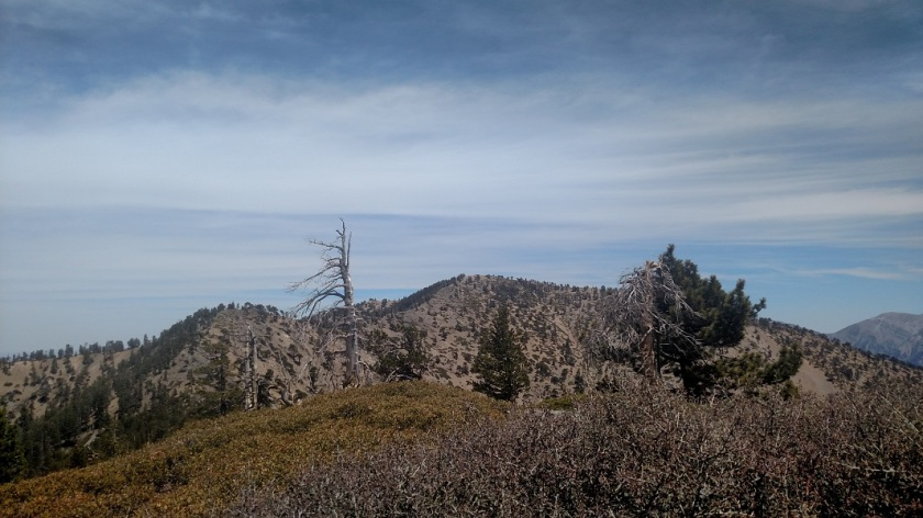 Mt Baden-Powell, Angeles National Forest