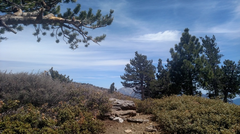 Mt. Burnham, Angeles National Forest