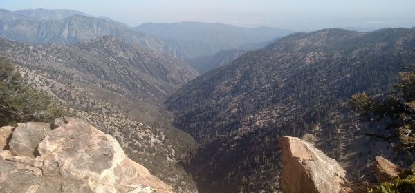View of the Iron Fork, Angeles National Forest