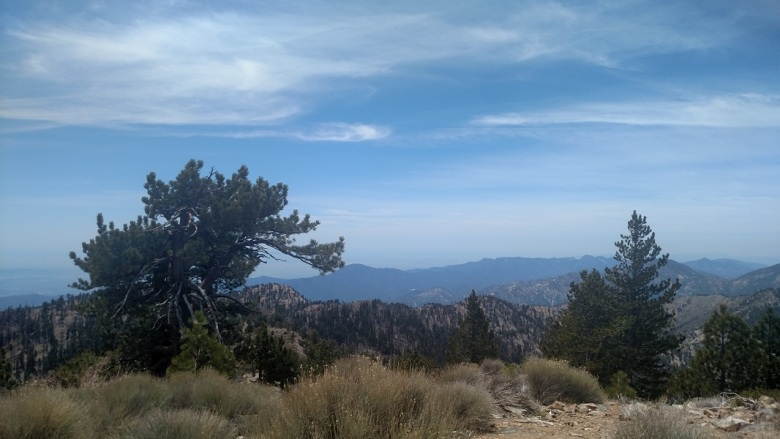 Throop Peak, Angeles National Forest