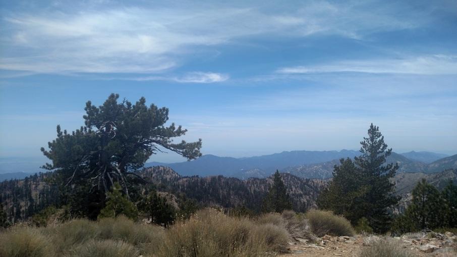 Throop Peak, Angeles National Forest