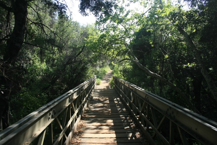 Bridge on the Viewridge Trail, Santa Monica Mountains, CA