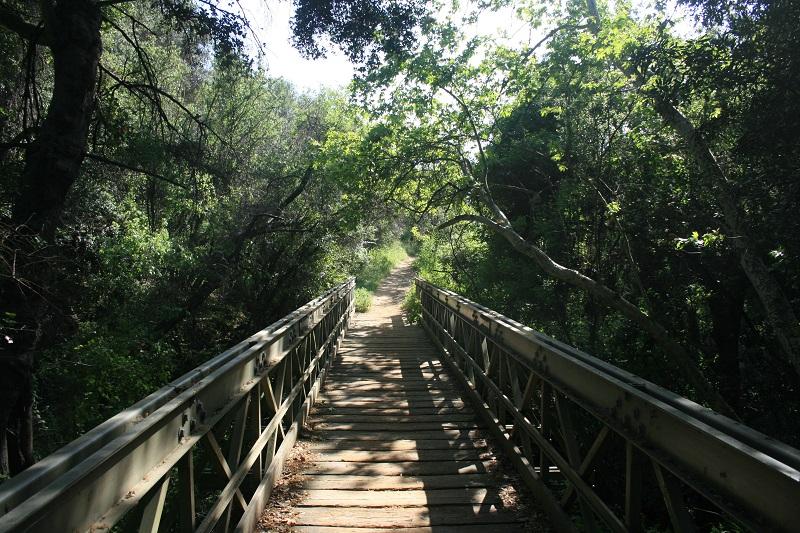 Bridge on the Viewridge Trail, Santa Monica Mountains, CA