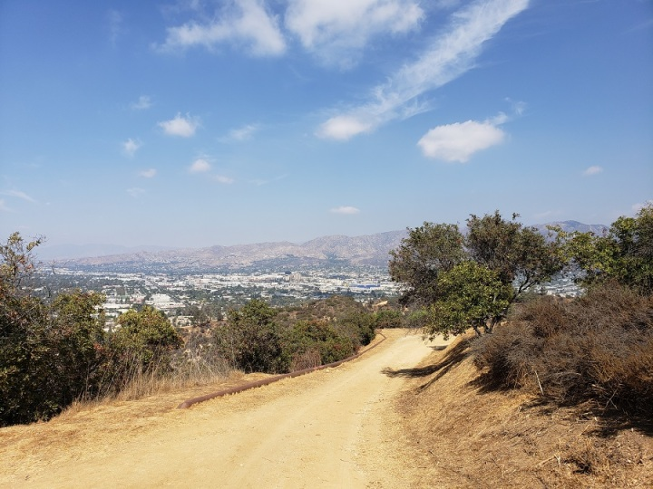 Toyon Trail, Griffith Park, Los Angeles