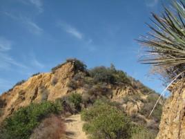 Backbone Trail just above the footbridge