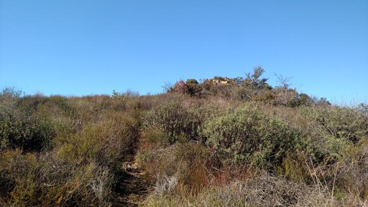 Temescal Peak, Santa Monica Mountains, CA