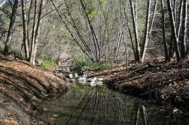 Crossing the creek in Big Dalton Canyon