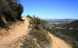 Switchbacks on the Rosewood Trail