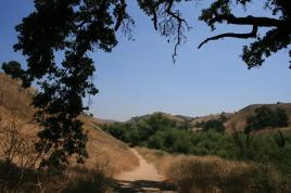 On the trail in the Las Virgenes Canyon Open Space Preserve
