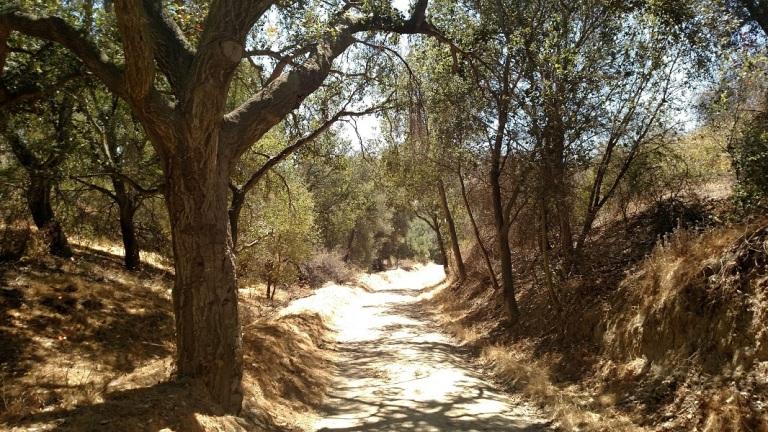 Powder Canyon, La Habra Heights, CA