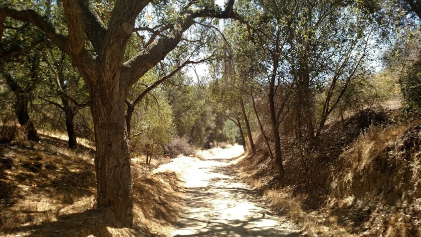 Powder Canyon, La Habra Heights, CA