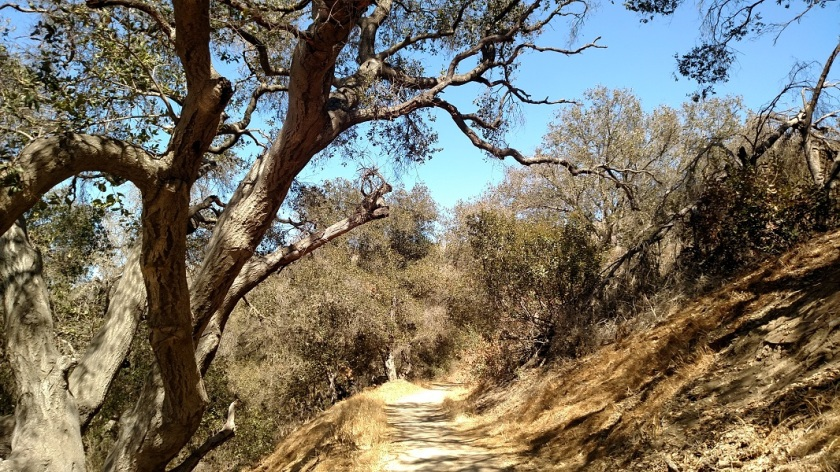 Switchbacks Trail, La Habra Heights, CA