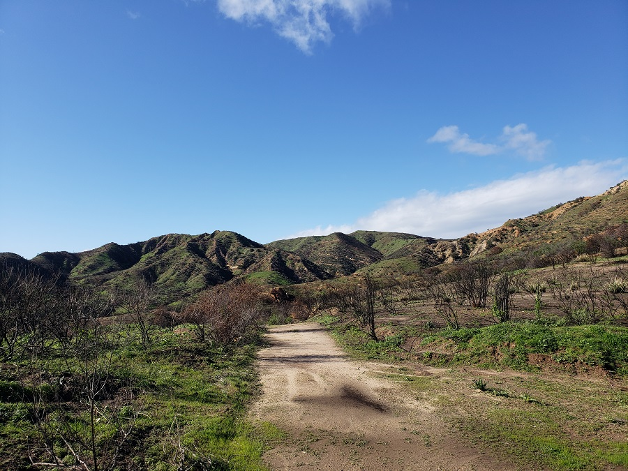 Bell Canyon Trail, Upper Las Virgenes Canyon, Calabasas