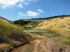 0481 Quail Trail Bend