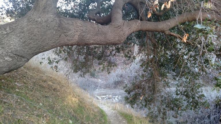 Anza Trail, Calabasas, CA