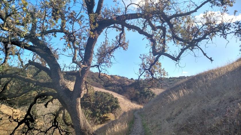 Anza Loop Trail, Calabasas, CA