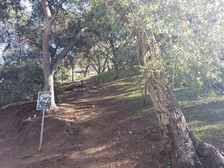 Firebreak Trail, Griffith Park, CA