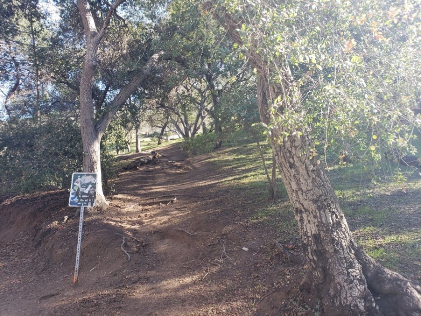 Firebreak Trail, Griffith Park, CA