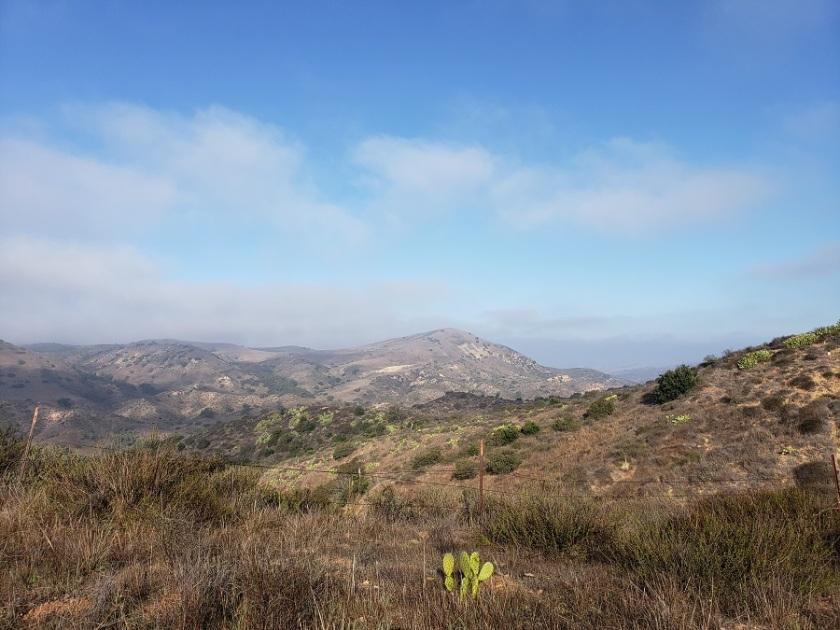 Limestone Ridge, Limestone Canyon Regional Park