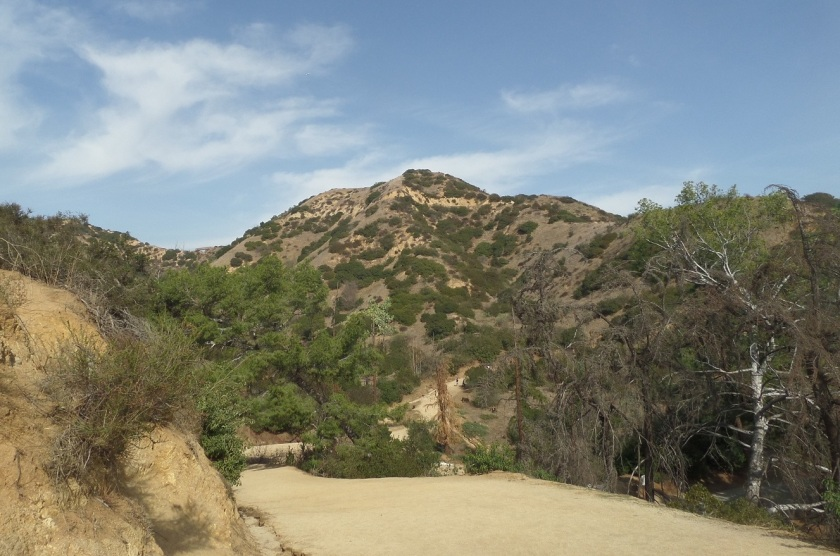 Glendale Peak, Griffith Park, CA