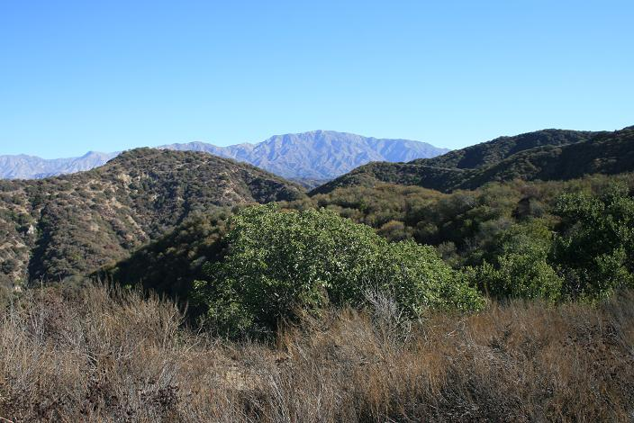 West Verdugo Mountains Loop | Nobody Hikes in L.A.