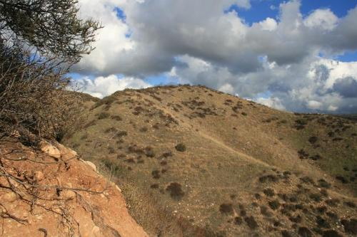 View from the Coyote Loop Trail, Quigley Open Space