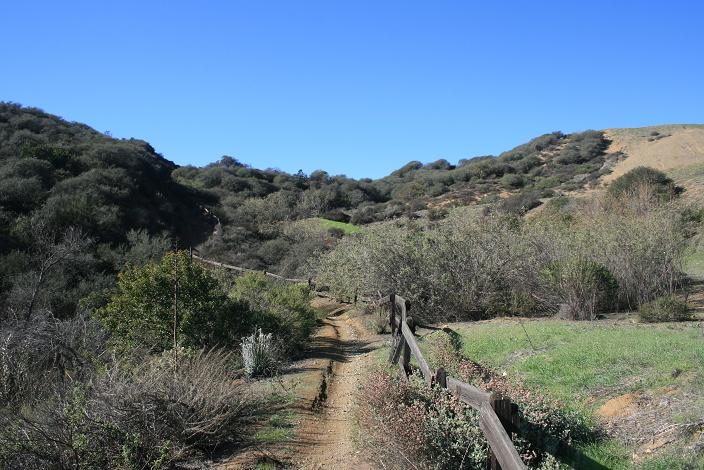 Through the meadows and hills on the Los Robles Trail