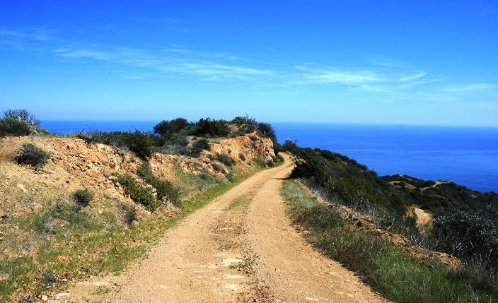 Ocean view from the Trans Catalina Trail