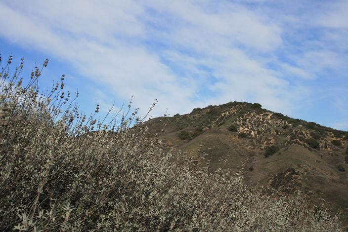 Looking up toward Heartbreak Ridge