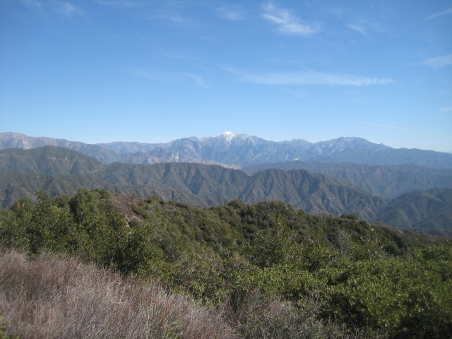 Mt. Baldy from the summit of Mt. Bliss