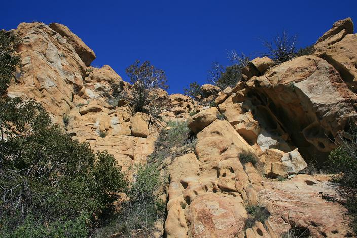 Geology on the Oakbrook Vista Trail