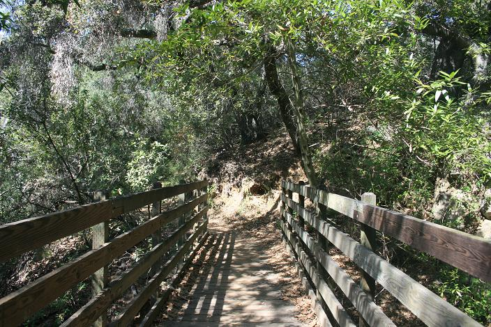 Footbridge on the Dead Horse Trail, before the ascent from the canyon