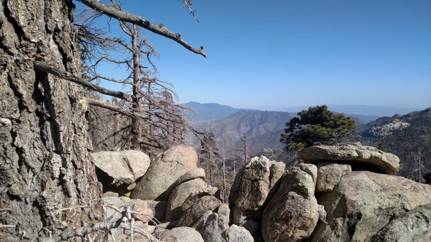 Hidden Divide Preserve, Mt. San Jacinto State Park