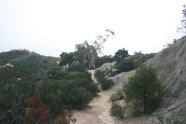Hiking 03.2013 004