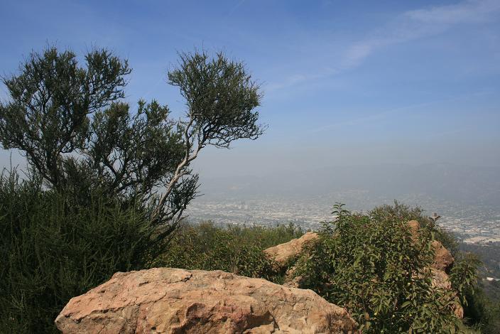 Summit of Mt. Bell