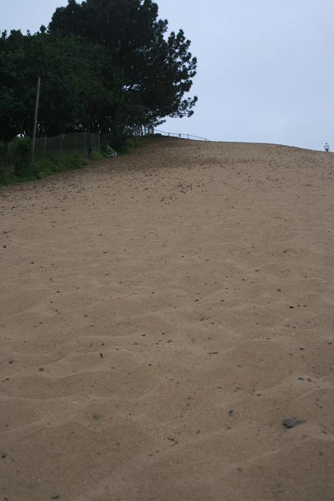 Looking up from the bottom of the dune