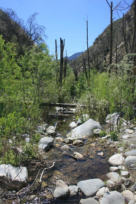 Stream crossing in Trail Canyon