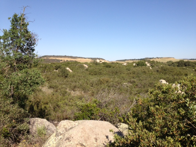 Looking across the plateau from the Granite Trail