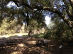 0:05 - Picnic area under the oaks (times are approximate)