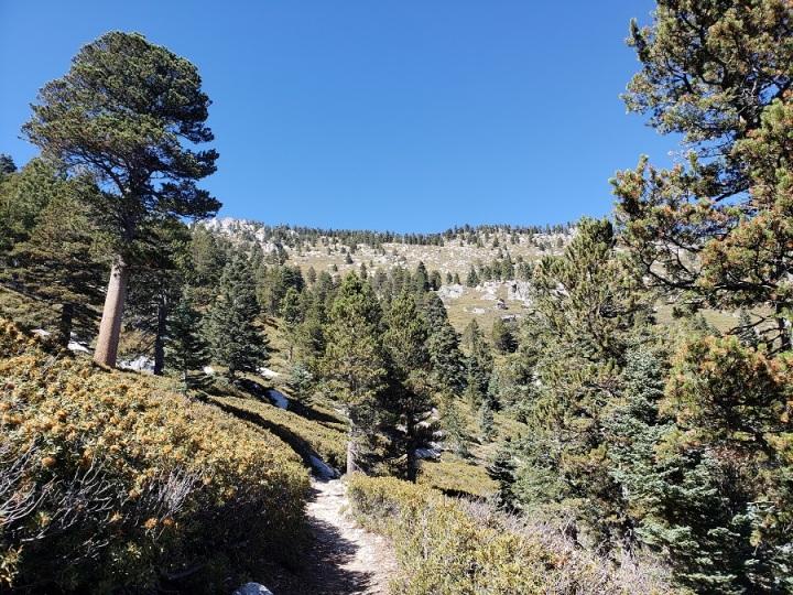 San Jacinto Peak, CA