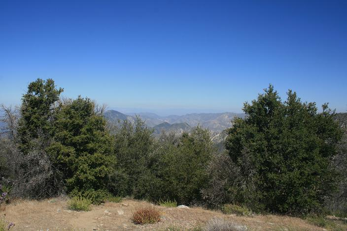 Looking north from just below Mt. Lowe's summit