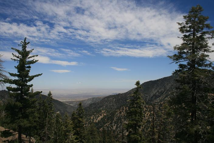 View of the high desert from below Little Jimmy Trail Camp