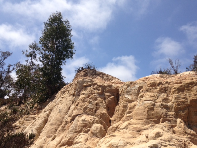 Geology in San Dieguito County Park