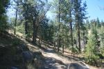 0:00 - Beginning of the Exploration Trail (click thumbnails to see the full sized version)