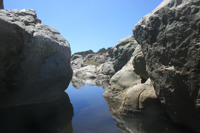 Los Penasquitos Creek, below the waterfall
