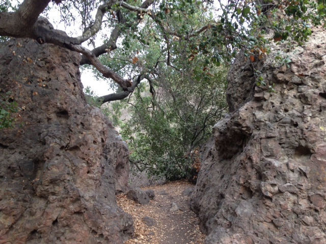 Geology in Camarillo Grove Park