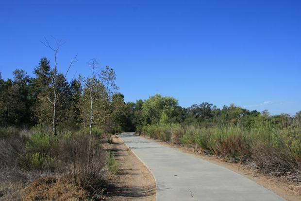 Open space in Mason Regional Park