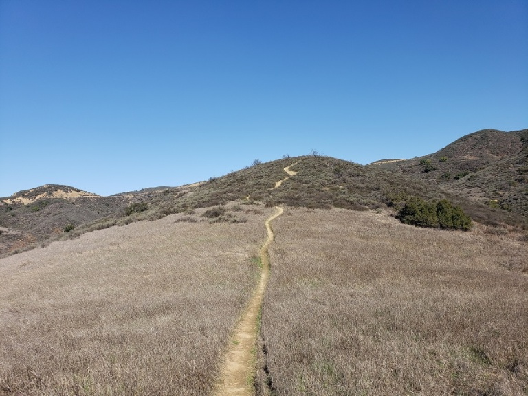 Trail in upper Black Star Canyon, CA