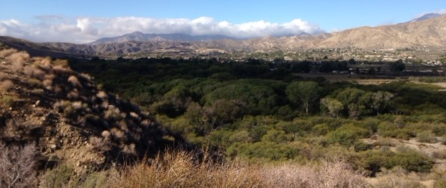 Looking west from the Yucca Ridge Trail