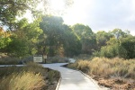0:00 - Boardwalk at the beginning of the Marsh Trail, Big Morongo Canyon (click thumbnails to see the full sized versions)